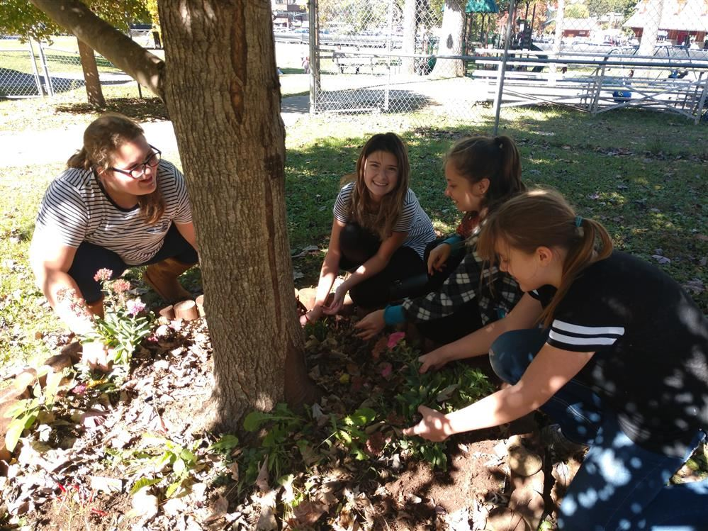 Student help maintain a tree