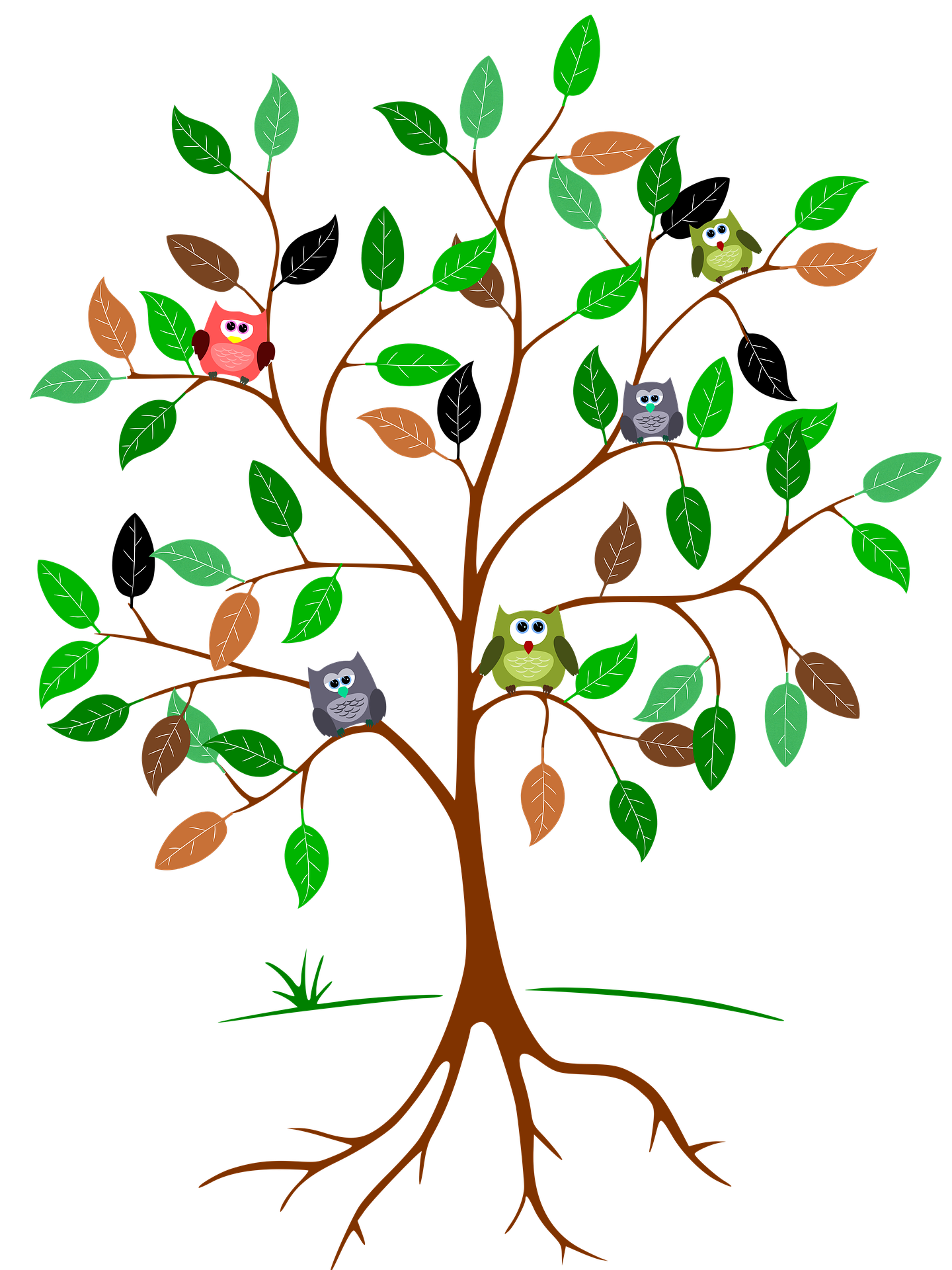 Tree Image with Owls